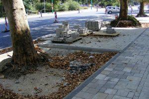 Tájékoztató a vasmű úti fákról