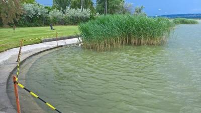 Újranyithat a vízminőség miatt bezárt négy velencei-tavi strand